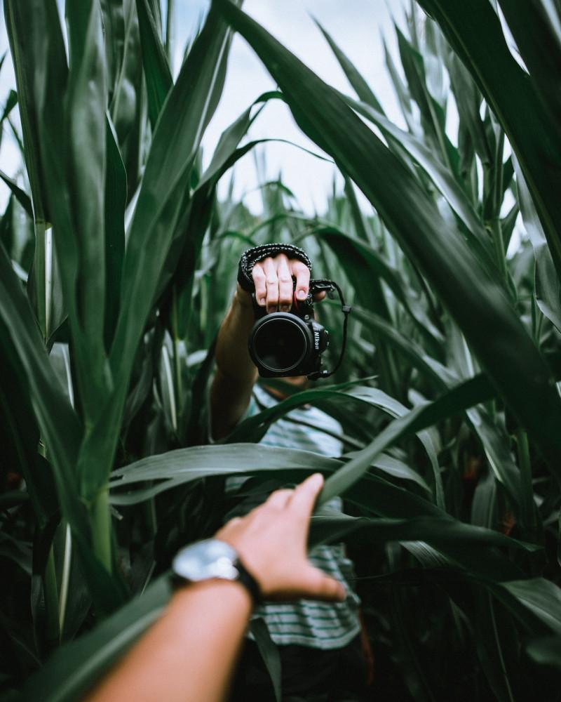 person-holding-camera-2025819
